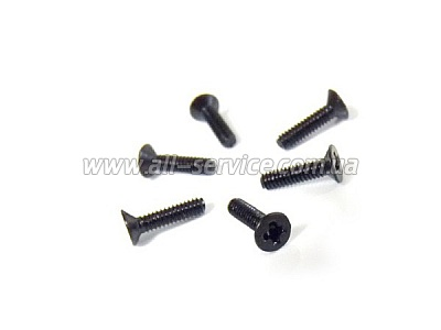 Flat Head Screw 2X8 6P